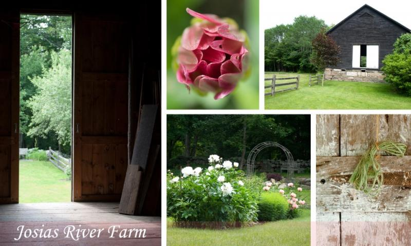 Our latest beautiful location in Cape Neddick Maine. Antique Barn and acres of gardens and orchards.